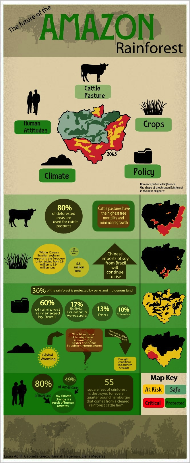 The Future of the Amazon Rainforest - an infographic by Laura Aprill, Gabby Greco, Hannah Hageman, and Elena Mederas