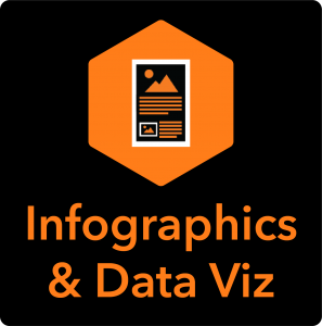 Infographics & Data Visualization Icon